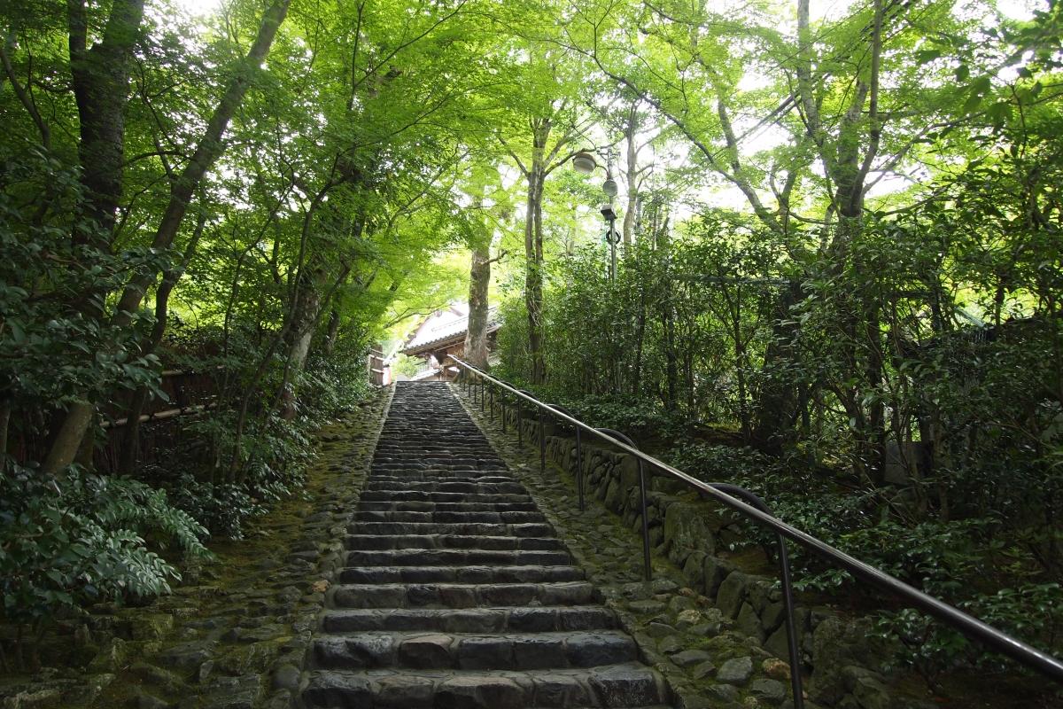 鈴虫寺 石段